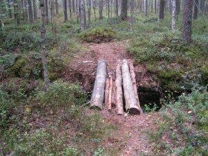 A log bridge crossing a ditch