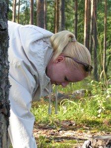 Anna picking blueberries
