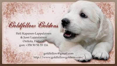 goldfellow-card